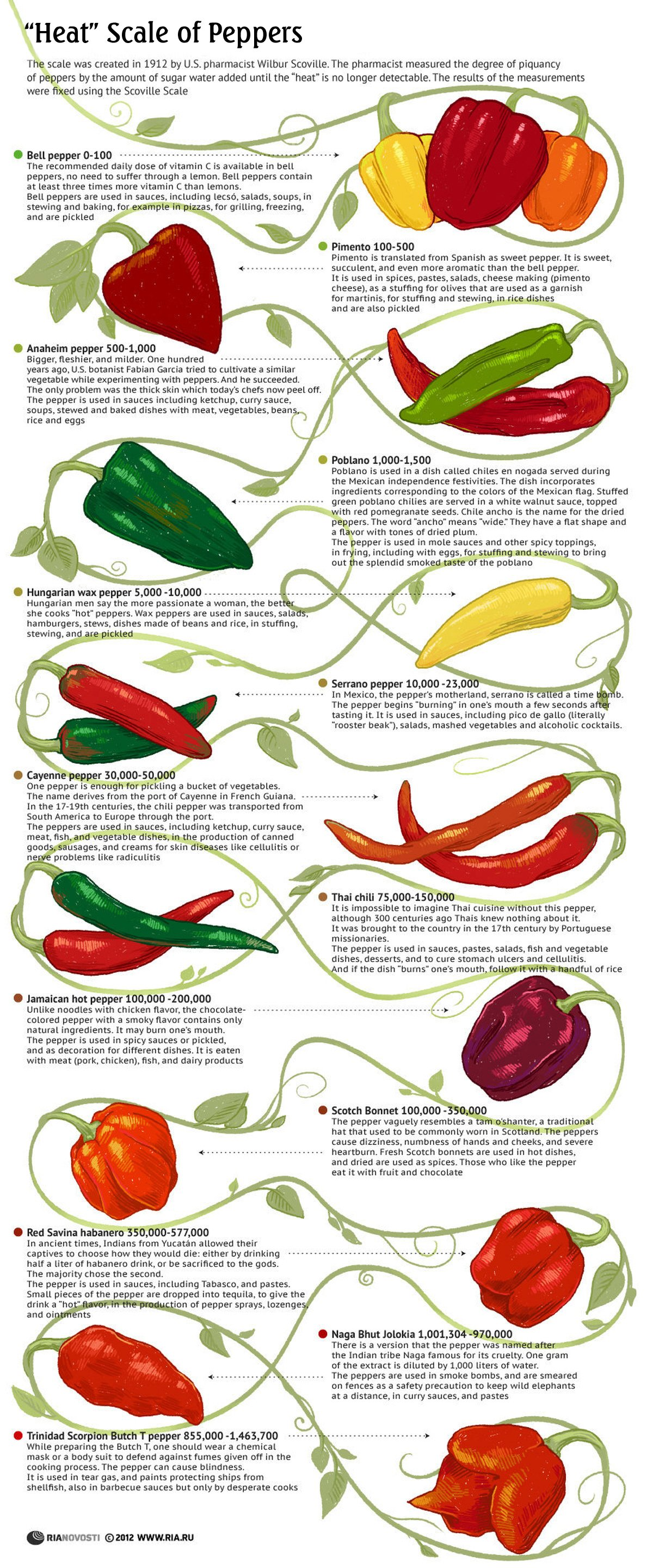 Use a good variety of peppers. This time, I seem to have chosen all ...