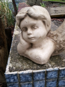 Angel face -