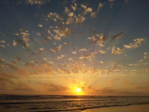 Grayland Beach, Washington